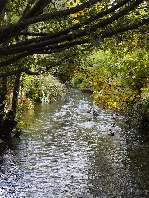 Shere, Surrey, England, Travel