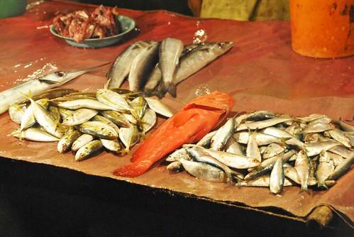09 Playas, mercado y templo de Panadura (33)