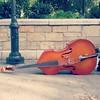 Resting bass viol, 10/24/14