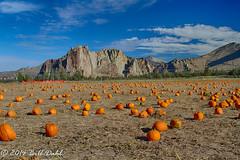 Recalling October