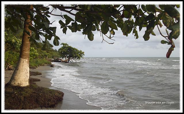 Playas de Livingston