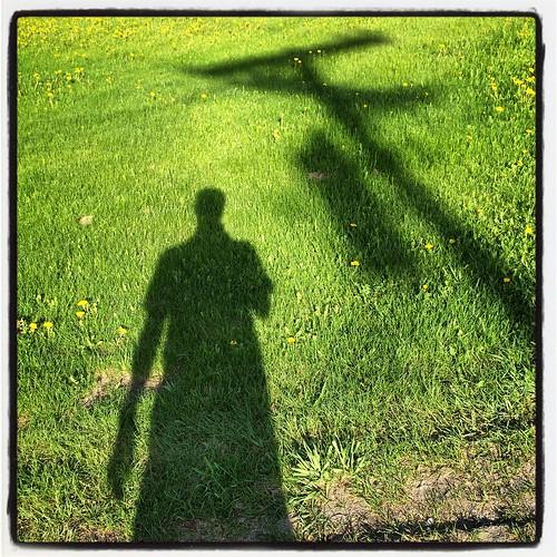 grass vermont shadows selfportraits telephonepoles vt dandelions lawns westdanville instagram