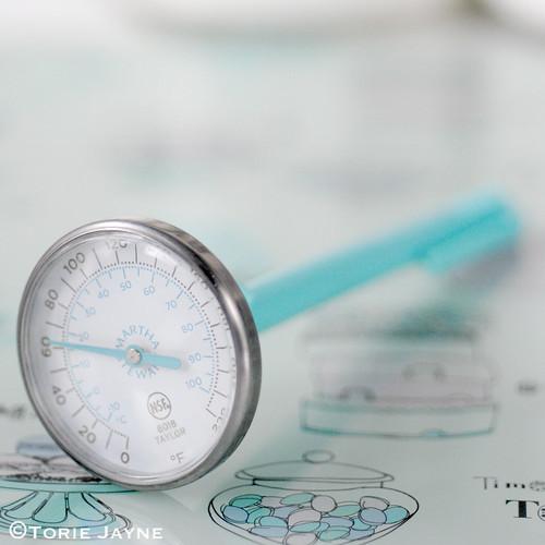 Martha Stewart thermometer