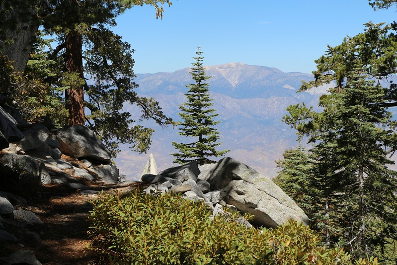 San Gorgonio from the Fuller Ridge Trail