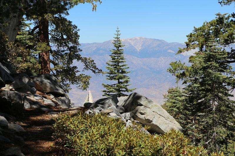 San Gorgonio from the Fuller Ridge Trail