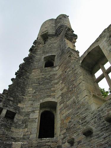 Ruines Abbaye bénédictine Lucq de Béarn (5)