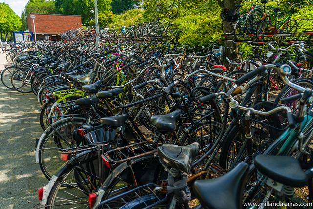 Aparcamiento de bicicletas