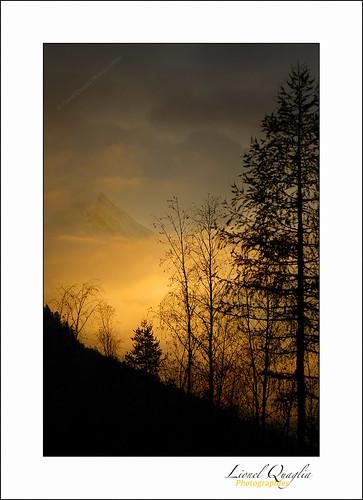 trees sunset mountain landscape couleurs arbres paysage chamonix mont brume coucherdesoleil montagnes couleursdautomne hautesavoie aiguille massifdumontblanc aiguilledugouter lionelquaglia