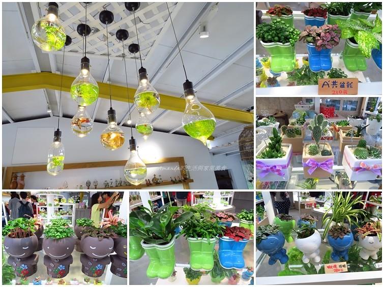 勝洋水草,水草燈,水草農場,水草餐廳,食尚玩家 @Amanda生活美食料理