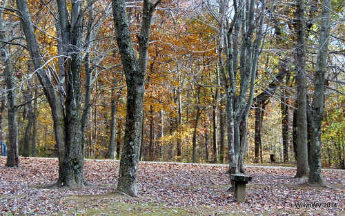 ohio barn campground belmontcounty ohiovalley barkcampstatepark