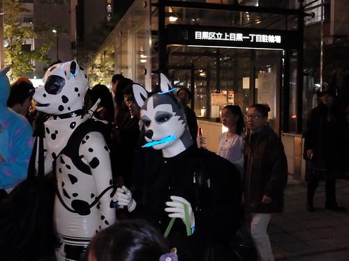 dogs Nakameguro Blue Halloween 35