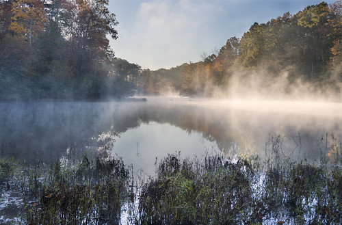 morning fog virginia nikon reservoir charlottesville explored ivycreeknaturalarea d7100 lvnative