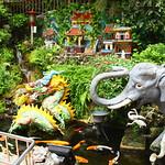 Tiere im Tempel