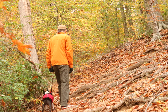 James River State Park Fall 2014 (254)