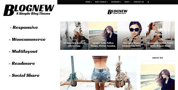 Blognew WordPress Theme free download