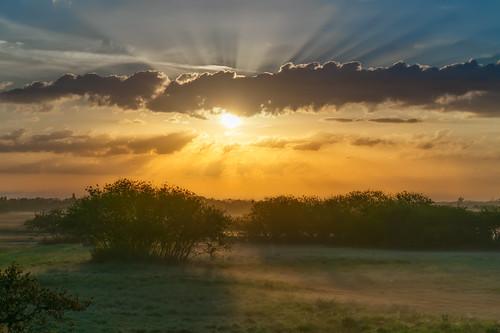 palmetto sonyalpha clouds cloudscape florida landscapephotography manateecounty sunrays unitedstates us
