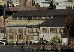 Seattle Marina #Seattle #marina #boat #travel #instaart #insta_america #digitalart #boating