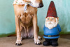 gnome_9839