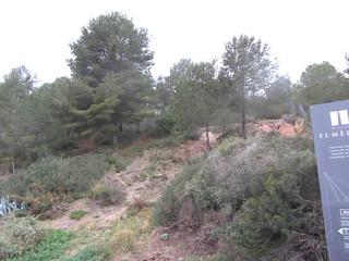 Pineda - Àrea de Servei Mèdol (AP7) - Tarragona