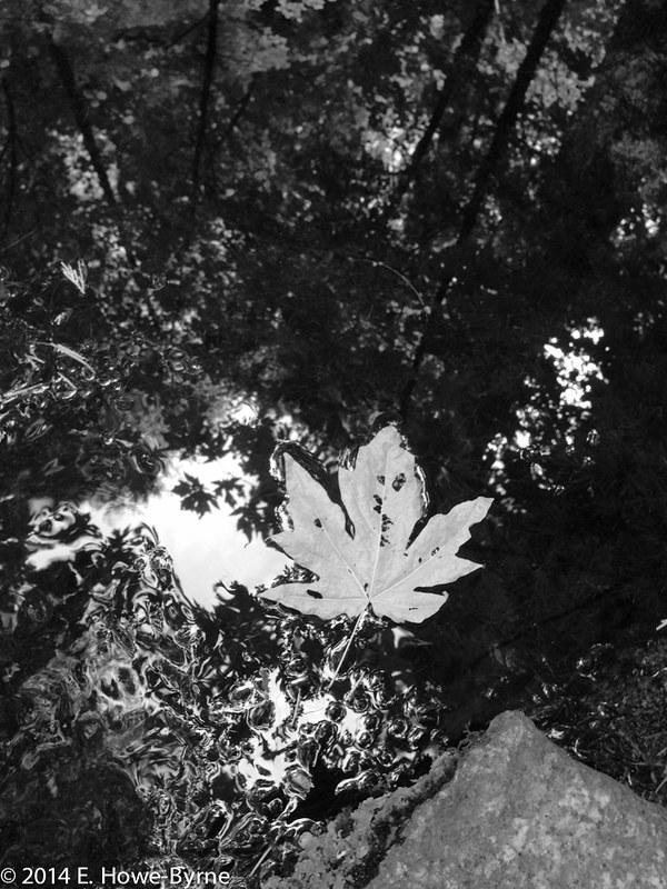 2014_08_29-13.59.39-Edit.jpg