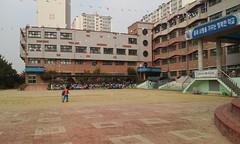 새금초 2학년 체육대회