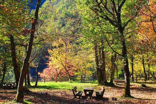 Sunny autumn day,Persi Italy(Piemonte)