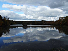 Granger Pond Fall 2014