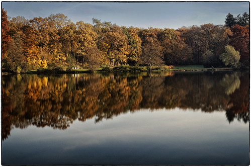 autumn red orange lake reflection water forest see colours peace sony herbst wald darmstadt lonelyness oberwaldhaus alpha57