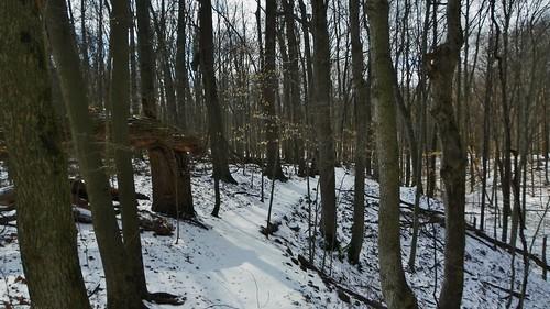 Robb Hidden Canyon ACRES Preserve(4)