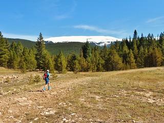 Running on Mitchell Creek Trail