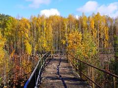Tur langs tømmerrenna i Vennesla