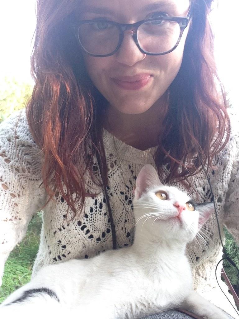 kedi friend