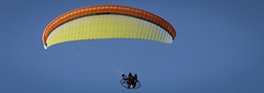 wing(0.0), illustration(0.0), paragliding(1.0), parachute(1.0), air sports(1.0), sports(1.0), parachuting(1.0), windsports(1.0), powered paragliding(1.0), extreme sport(1.0),