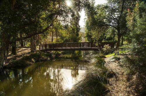 park bridge sunshine river australia perth wa westernaustralia johnoldhampark dayreflectiion