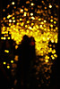 Infinity Mirrored Room / Yayoi Kusama