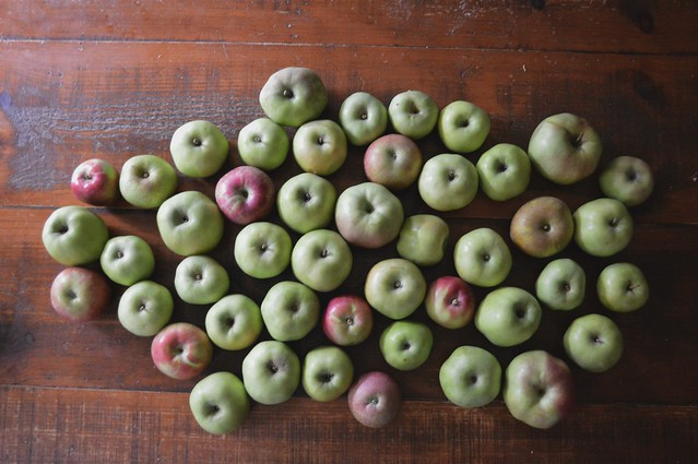 Picked Apples