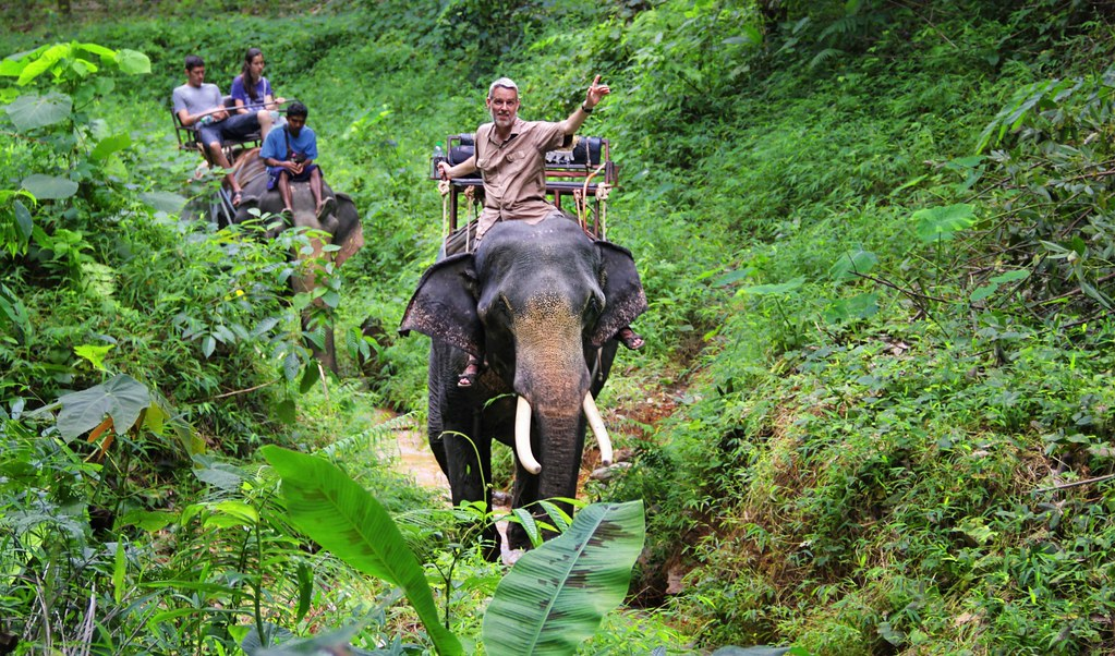 Mahout Ben riding an Elephant trek in the jungle of Khao Sok