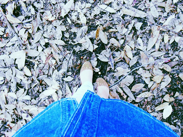 www.meuolharmagico.blogspot.com