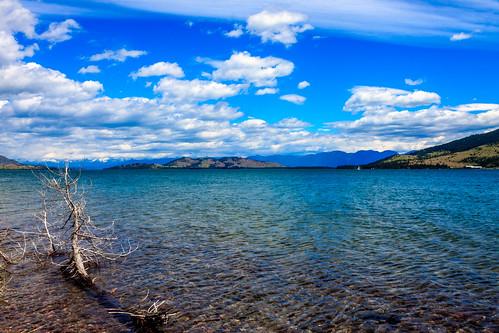 paisagem Montana EUA