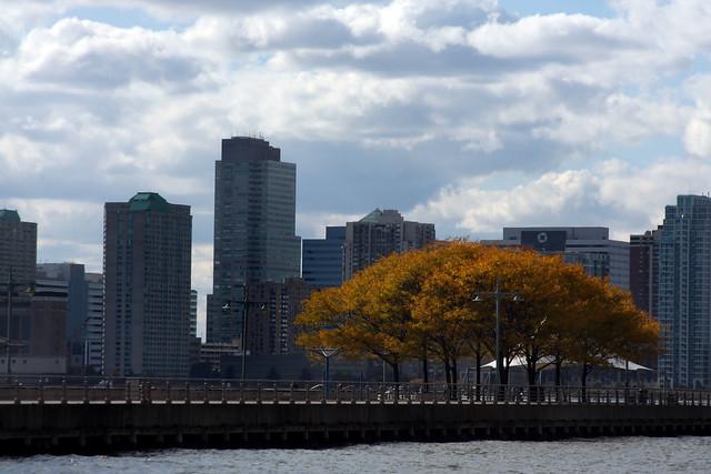 NYC (161)