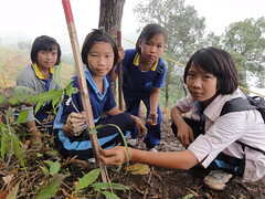 Soneva Forest Restoration Project, Chiang Mai 08