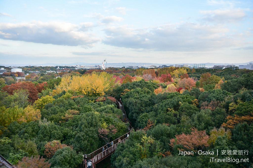 大阪赏枫 万博纪念公园 红叶庭园 32