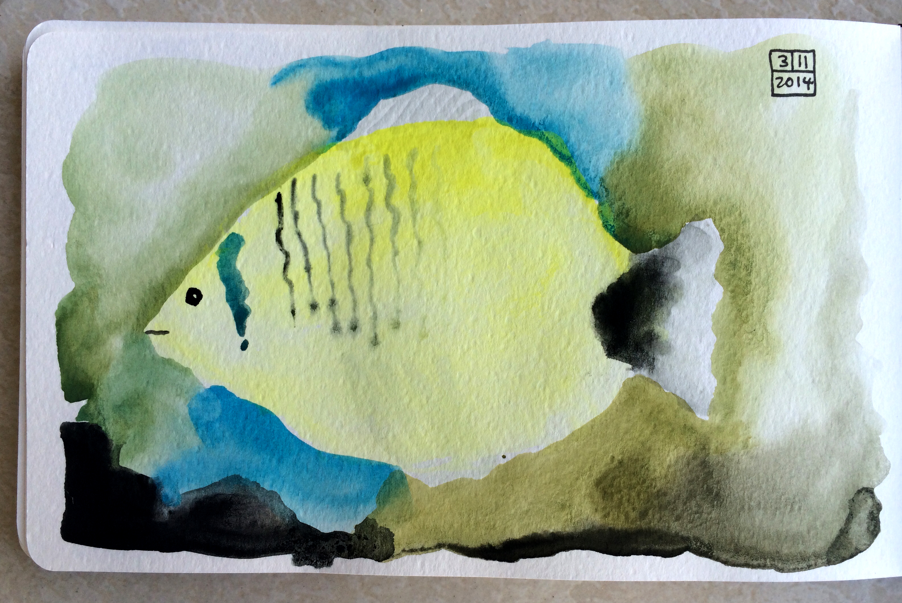 Lemon Butterflyfish
