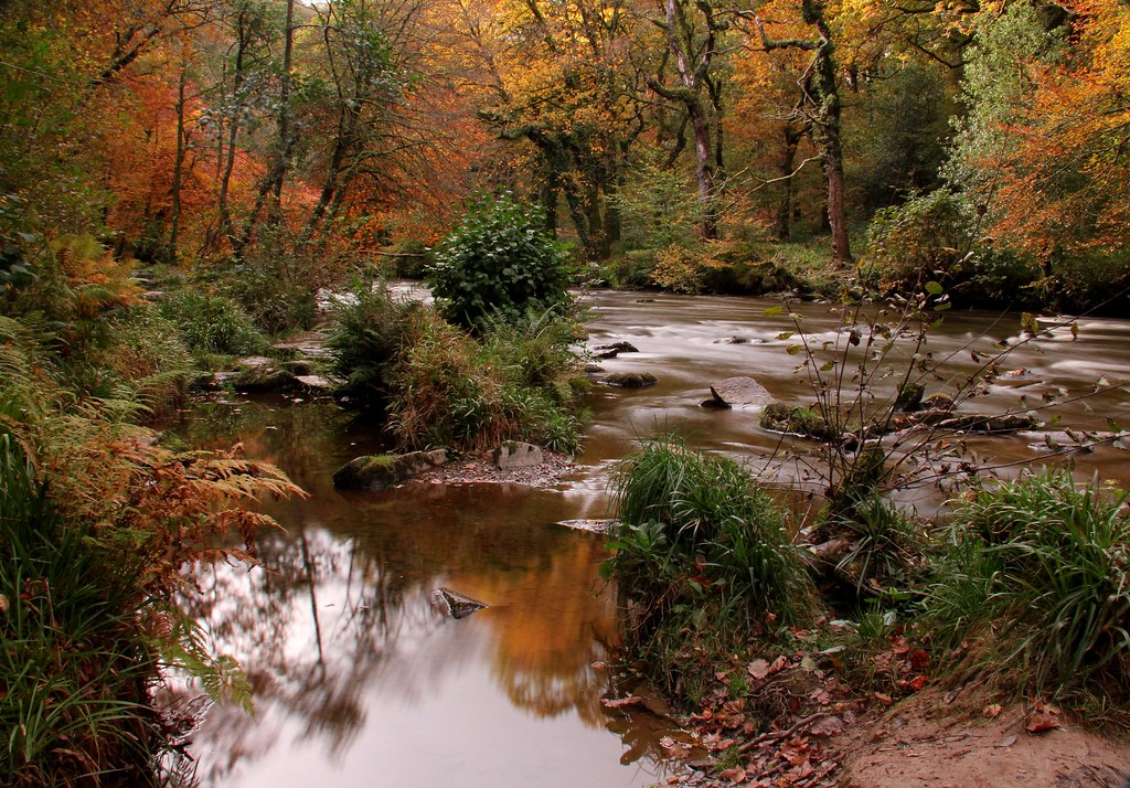 Autumn in an Exmoor valley
