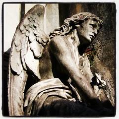 Angel - Recoleta Buenos Aires, Argentina  #igers #instagramers #IG_AMERICAS #igersphilia #igersbsas #igersbuenosaires #igersgallerymadrid #buenosaires #arteemfoco #photooftheday #fotodeldiabsas #recoleta #estatuas #arte #turismo