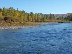 Yakima River in Autumn