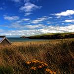 Cardigan Bay From Cardigan Farm