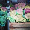 Broccoli and cauliflower, 10/22/14