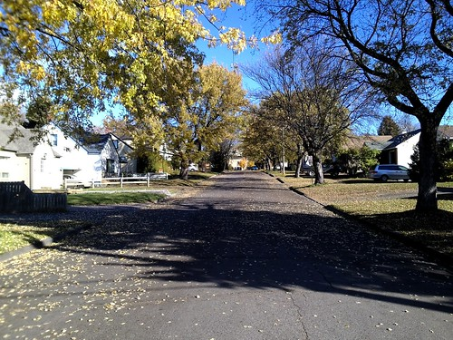 A view up my street in autumn