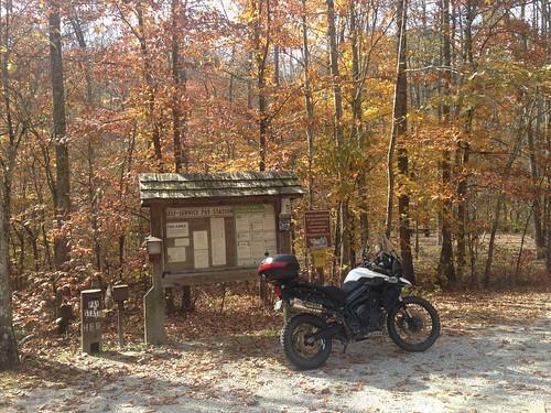 fall cycle